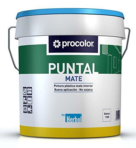 procolor-pintura-plastica-mate-puntal-procolor-4-l