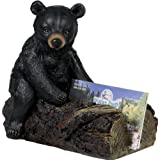Bear Cub Business Card Holder ~ River's Edge
