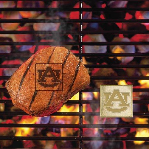 FANMATS NCAA Auburn University Tigers Metal-Alloy FanBrand