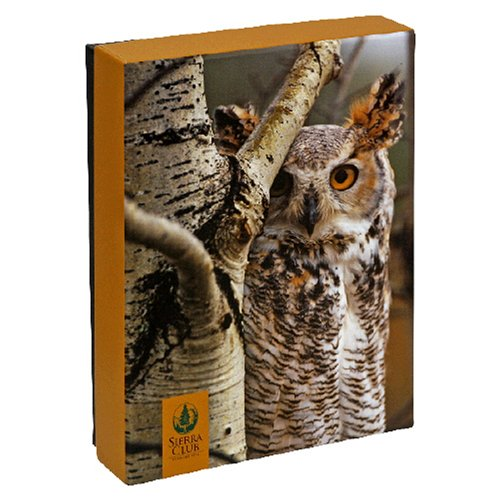 Pomegranate Sierra Club Owls Standard Boxed Note Card Set (Pack of 2)