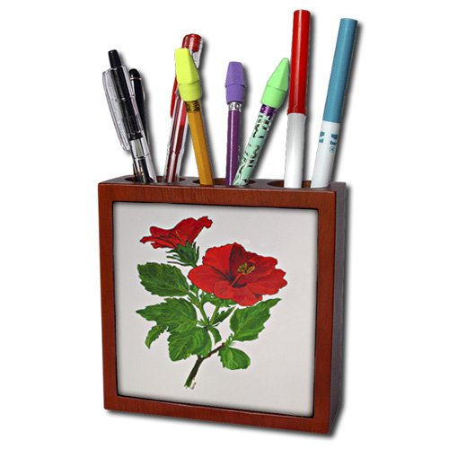 3dRose ph_78716_1 Hibiscus Chinese Hibiscus, Delicate Beauty, Hawaii, Hibiscus, Perfect Bride, Red Hibiscus Tile Pen Holder, 5-Inch