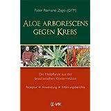 """Aloe arborescens gegen Krebs: Die Heilpflanze aus der brasilianischen Klostermedizin. Rezeptur - Anwendung - Erfahrungsberichtevon """"Romano Zago"""""""