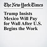 Trump Insists Mexico Will Pay for Wall After U.S. Begins the Work | Michael D. Shear,Emmarie Huetteman