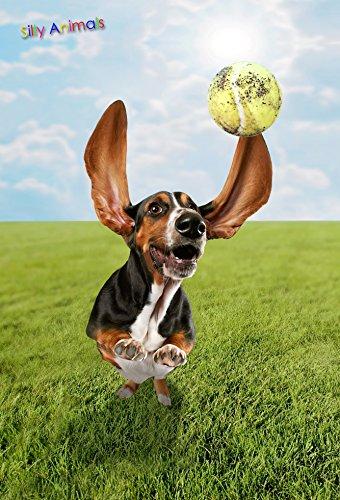 Gift Trenz Dog Ball- 3D Magnet