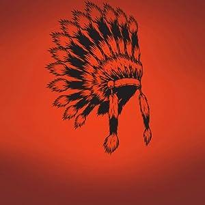 Vinyl Wall Art Decal Sticker Indian Head Dress
