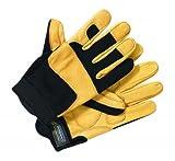 Dickies mécanique gants velcro, pointure:XL