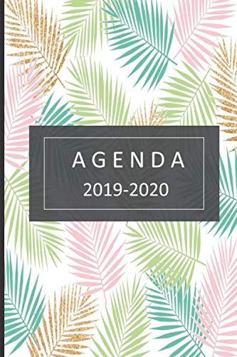 agenda lindo planificador 2019-2020 del 1 de julio del 2019 al 31 de diciembre del 2020 diario semanal mensual  [mujer, agenda] (Tapa Blanda)