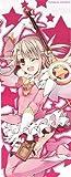 Fate/kaleid liner プリズマ☆イリヤ スリムポスター