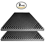 "Acoustic Foam 2.5"" Egg Crate Panel Studio Soundproofing Foam Wall Panel 48"" X 24"" X 2.5"" (2 Pack)"