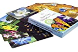 Bach Flower Divination Cards - New! A Pack of 38 Beautifully Illustrated Cards with Inspirational Proverbs, Quotes and Positive Affirmations. The Perfect Gift For Bach Remedy Lovers!