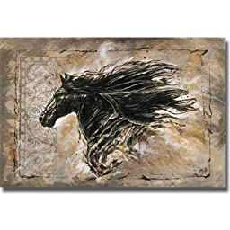 Black Beauty by Marta Willey Premium Gallery-Wrapped Canvas Giclee Art (Ready to Hang)