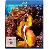 """Korallenriff Aquarium in HD - Die Unterwasserwelt der Fidschis [Blu-ray]von """"-"""""""