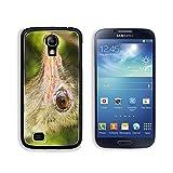 MSD Samsung Galaxy S4 Aluminum Plate Bumper Snap Case Close Up Portrait Of Ostrich 33670534 Reviews