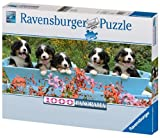 Ravensburger 15116 'Bernese Mountain Dog' Panorama Puzzle 1,000 Pieces