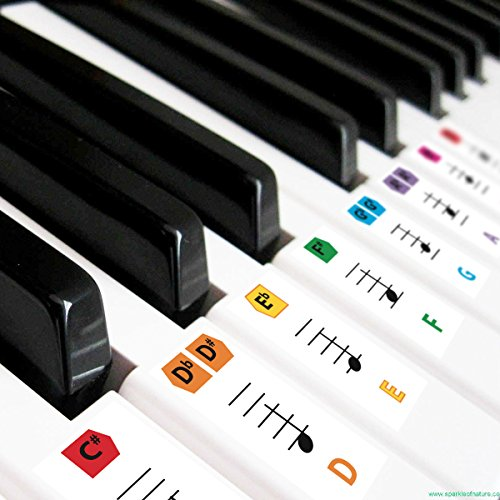 Best Reusable Large Color Piano Key Note Keyboard Stickers for Adults & Children's, FREE E-BOOK, Great for Beginners Sheet Music Book, Teacher Recommended to Learn to Play Keys & Notes Faster (Piano By Number For Kids compare prices)