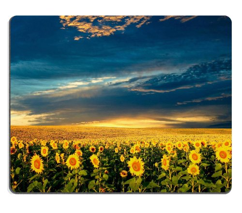 Sunflower Field Under Cloudy Sky Nature Endless Fields Tall Mouse Pads Customized Made To Order Support Ready 9 7/8 Inch (250Mm) X 7 7/8 Inch (200Mm) X 1/16 Inch (2Mm) High Quality Eco Friendly Cloth With Neoprene Rubber Liil Mouse Pad Desktop Mousepad La front-566671