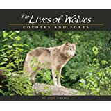 The Lives of Wolves, Coyotes and Foxes