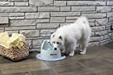 PetSafe Drinkwell Big Dog Pet Fountain