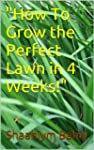 How To Grow a Perfect Lawn in 4 Weeks!