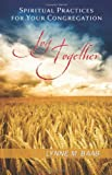 Joy Together: Spiritual Practices for Your Congregation (0664237096) by Baab, Lynne M.
