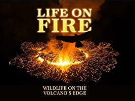 Life on Fire: Wildlife on the Volcano's Edge Season 1 [HD]