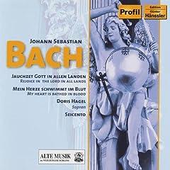Jauchzet Gott in allen Landen!, BWV 51: Recitativo: Wir beten zu dem Tempel an (Soprano)