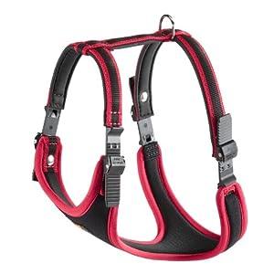 Harness recommendaion please 51qMptqDuEL._SL500_AA300_