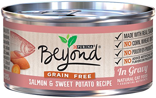Purina Beyond Gravy Grain Free Salmon & Sweet Potato Recipe Wet Cat Food