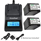Kastar Fast Charger and Battery (2-
