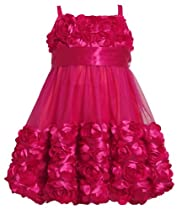 Size-2T BNJ-5396X FUCHSIA DIE CUT ROSETTE BORDER BUBBLE MESH OVERLAY Special Occasion Flower Girl Holiday Party Dress,X65396 Bonnie Jean TODDLERS