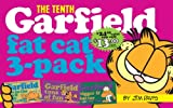 Garfield Fat Cat 3-Pack #10: Contains: Garfield Life in the Fat Lane (#28); Garfield Tons of Fun (#29); Garfi eld Bigger and Better (#30)) (Garfield Fat Cat Three Pack) (0345434587) by Davis, Jim
