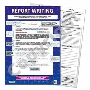 Primary school report writer