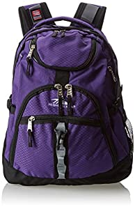 High Sierra Access Backpack, Deep Purple/Black, 20 x 15 x 9.5-Inch