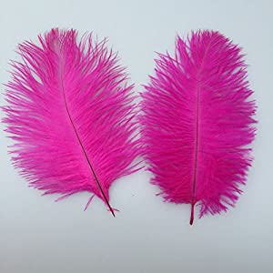 Sowder 20pcs Natural 10-12inch(25-30cm) Ostrich Feathers Plume for Wedding Centerpieces Home Decoration by shuoheng