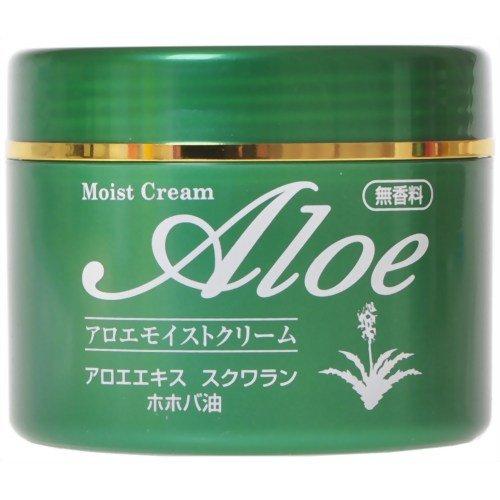 井藤 アロエモイストクリーム 160g