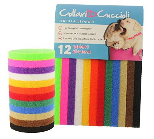 12 Colorati Collari ID - Per Cuccioli di cane o gatto - Per gli allevatori