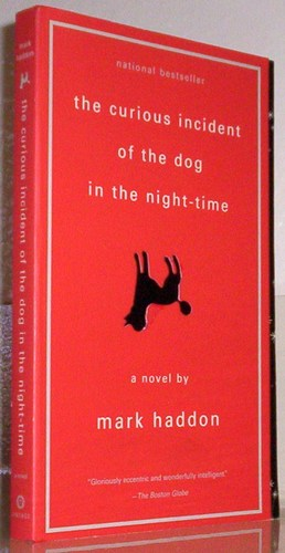 a report on the curious incident of the dog in the night time a mystery novel by mark haddon