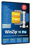 Corel WinZip 18 Pro EN DVD (PC)