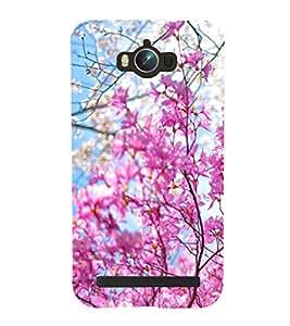 Fresh Spring Flowers 3D Hard Polycarbonate Designer Back Case Cover for Asus Zenfone Max ZC550KL :: Asus Zenfone Max ZC550KL 2016 :: Asus Zenfone Max ZC550KL 6A076IN