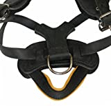 Dean and Tyler The Blade Nickel Hardware Dog Harness with Handle, Black, Large - Fits Girth Size: 22-Inch to 36-Inch thumbnail