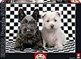 Educa Borras Puzzle Checked Terriers (500 Pieces)
