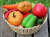 玩具の神様 食品サンプル 12種類セット どっさり お野菜 & タマゴ 模型 ディスプレイ おままごと 学校行事 などに最適!