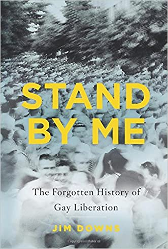 Stand by Me: The Forgotten History of Gay Liberation written by Jim Downs