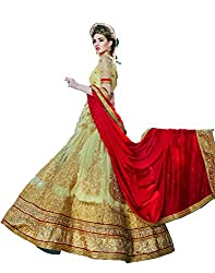 DesiButik's Wedding Wear Ravishing Chickoo Net Lehenga