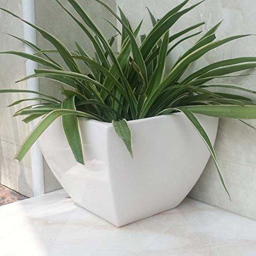 Ceramic Handmade Home/ Garden Large Square White Flower Planter Pot (Large Decorative Flower Pots compare prices)