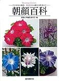 朝顔百科: 栽培・仕立て方から園芸文化史まで