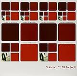 Volcano, I'm Still Excited!! [Vinyl]