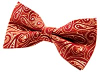 "Retreez Elegant Paisley Art Pattern Woven Microfiber Pre-tied Bow Tie (5"")"