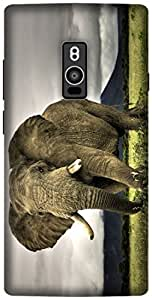 The Racoon Grip printed designer hard back mobile phone case cover for OnePlus 2. (Elephant)