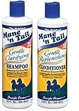 Mane 'n Tail Gentle Clarifying Shampoo & Gentle Replenishing Conditioner 12 oz